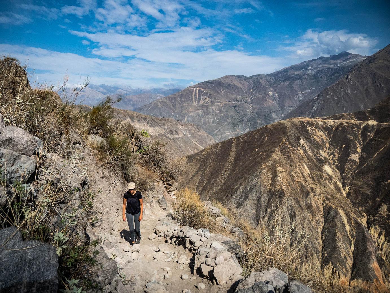 Le canyon de Colca, la remontée