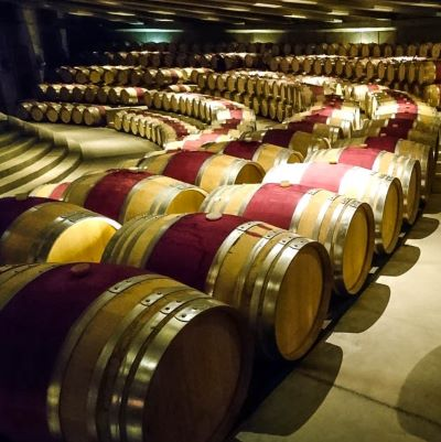 Santa Cruz, à la découverte du vin chilien