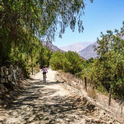La Serena, Vicuña et la vallée de l'Elqui