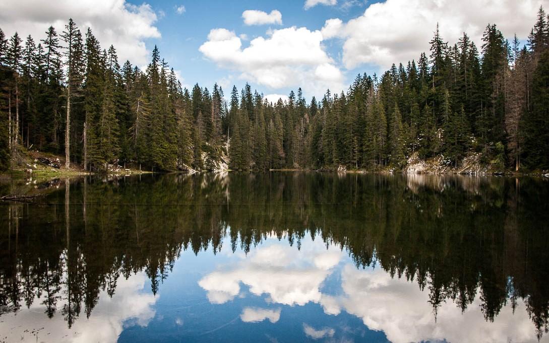 Lac noir dans le parc du Durmitor au Monténégro